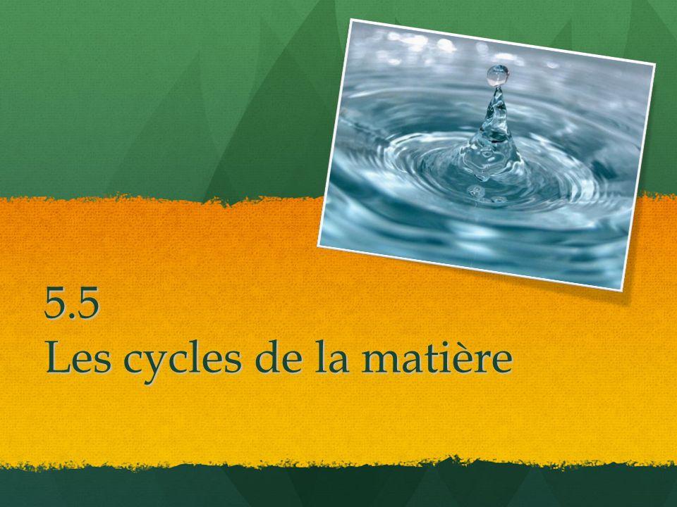 5.5 Les cycles de la matière