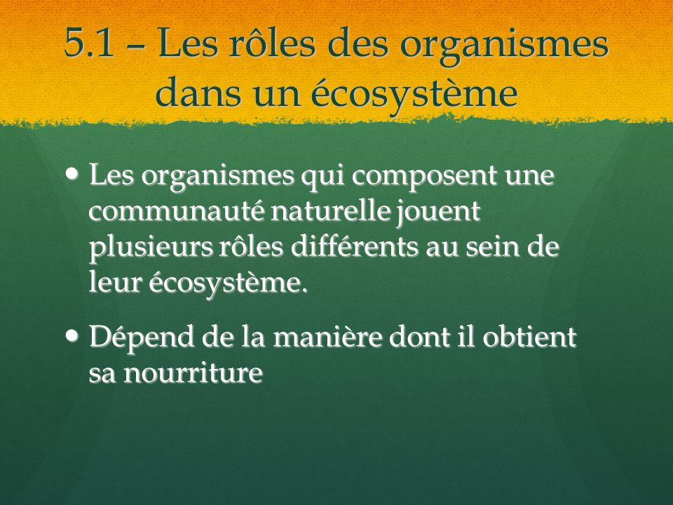 5.1 – Les rôles des organismes dans un écosystème