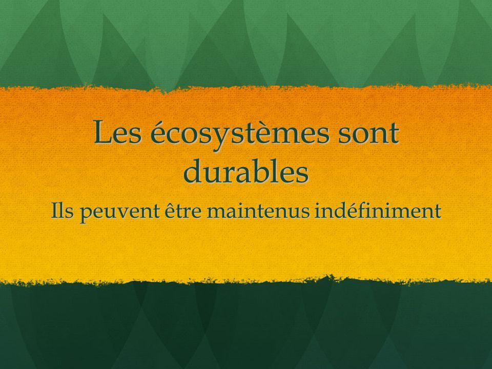Les écosystèmes sont durables