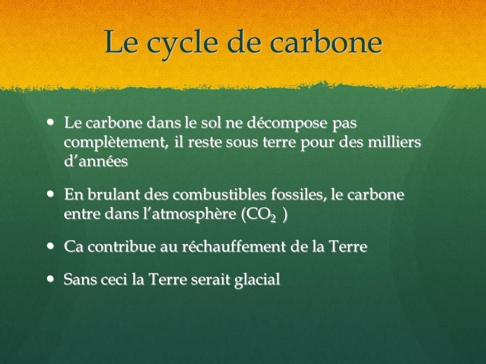 Le cycle de carbone Le carbone dans le sol ne décompose pas complètement, il reste sous terre pour des milliers d'années.