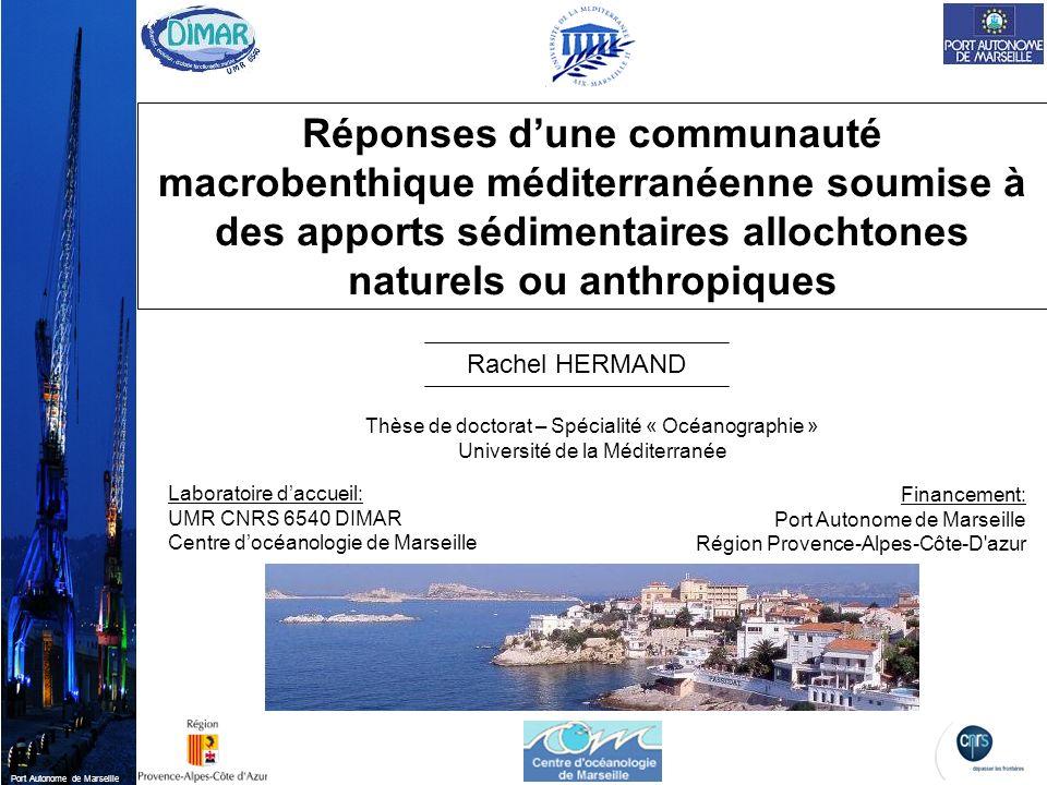Réponses d'une communauté macrobenthique méditerranéenne soumise à des apports sédimentaires allochtones naturels ou anthropiques
