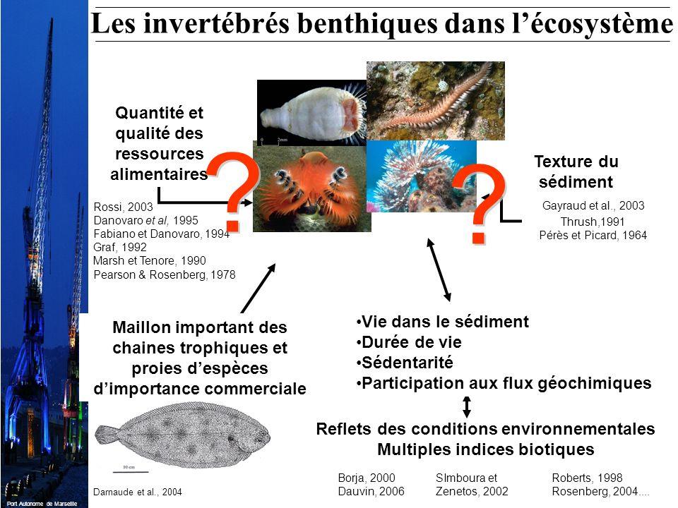 Les invertébrés benthiques dans l'écosystème