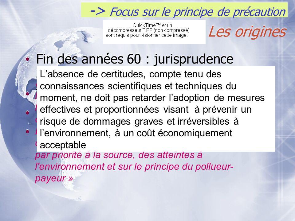 -> Focus sur le principe de précaution Les origines