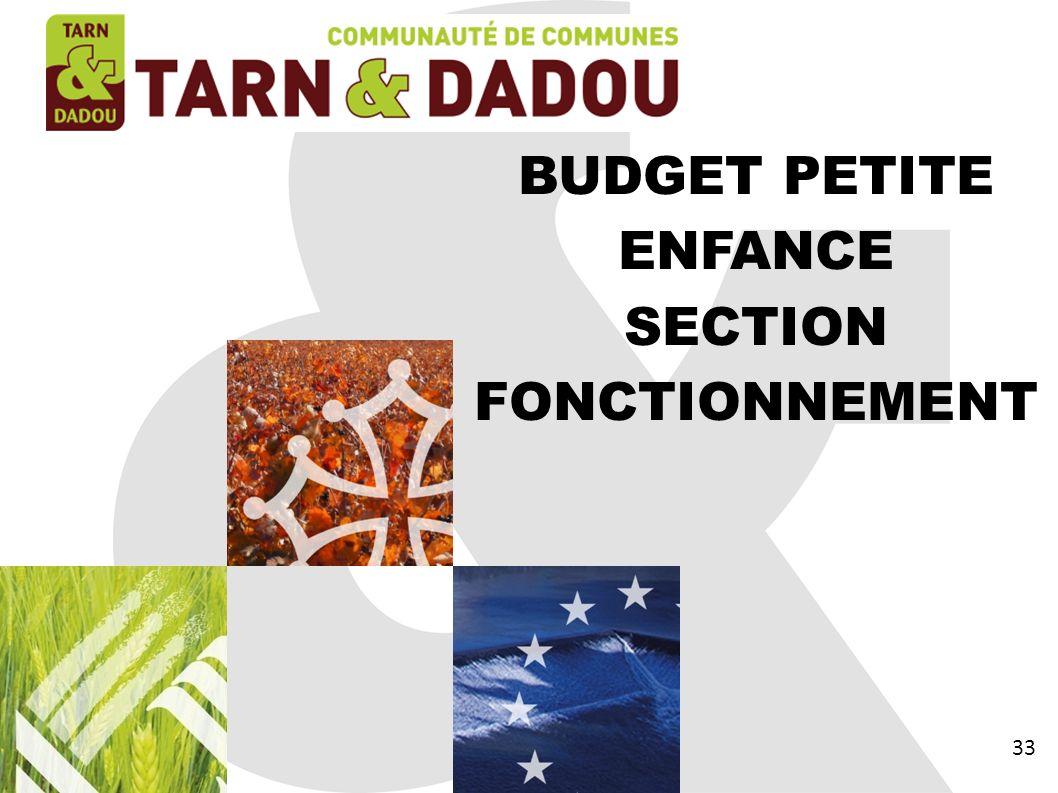 BUDGET PETITE ENFANCE SECTION FONCTIONNEMENT