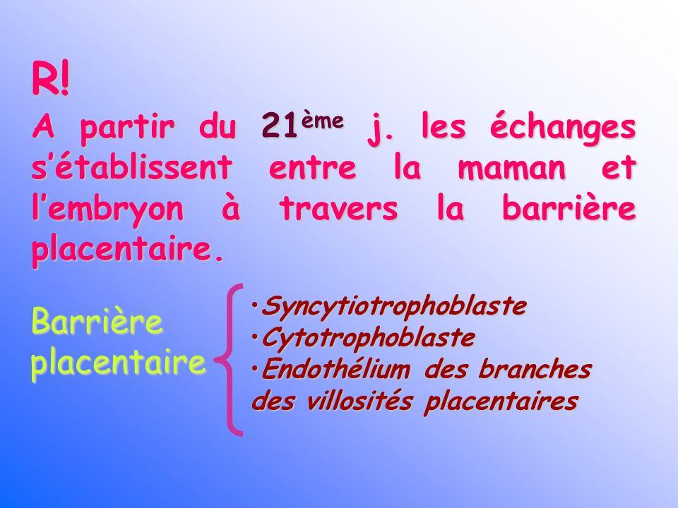 R! A partir du 21ème j. les échanges s'établissent entre la maman et l'embryon à travers la barrière placentaire.