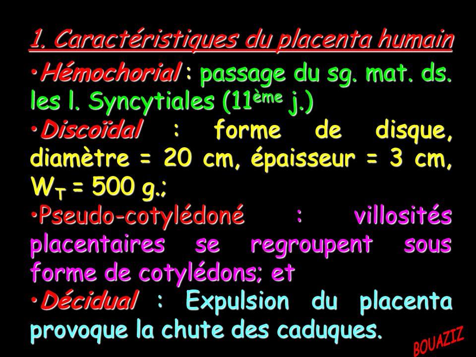 1. Caractéristiques du placenta humain