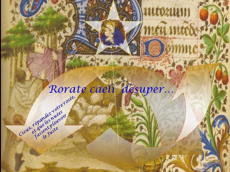 Rorate caeli desuper… Cieux, répandez votre rosée, et que les nuées