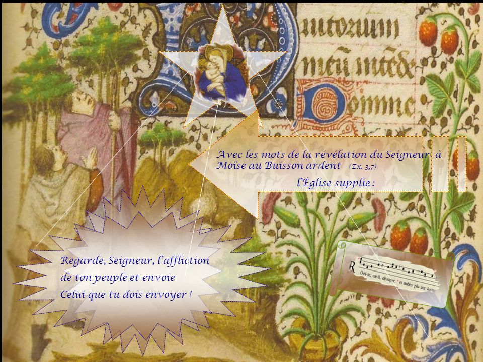 Avec les mots de la révélation du Seigneur à Moïse au Buisson ardent (Ex. 3,7)