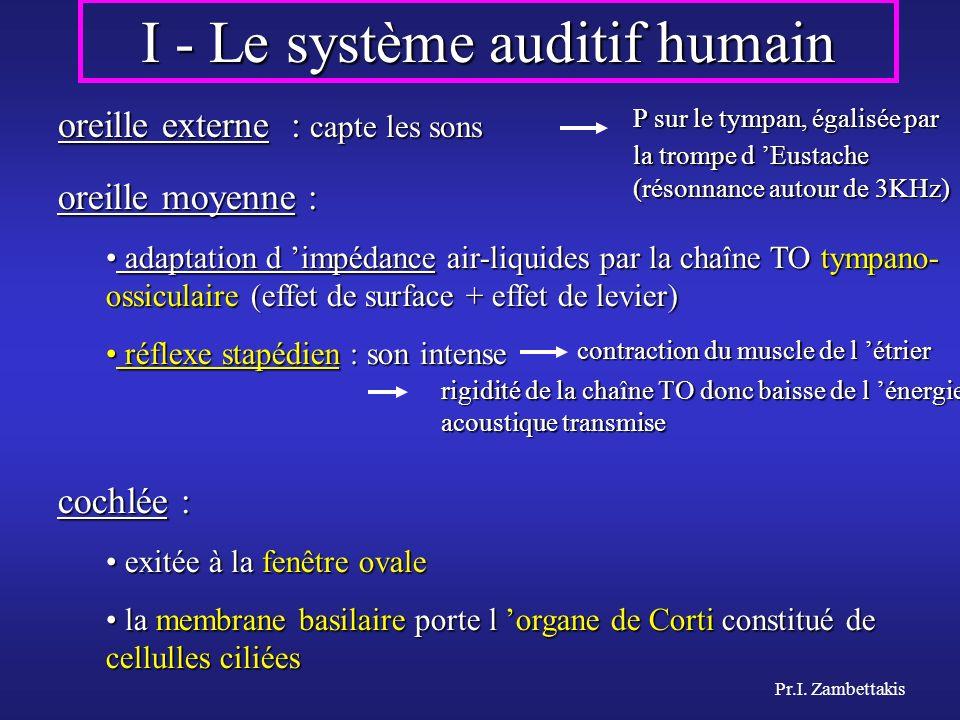 I - Le système auditif humain