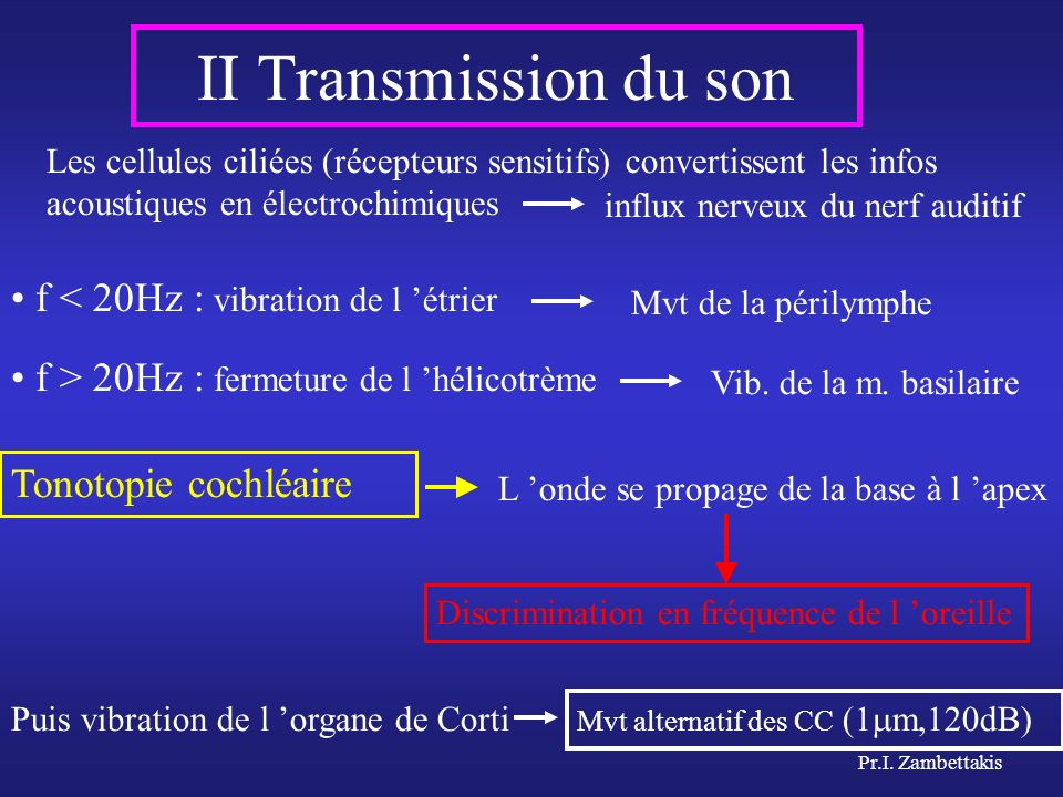 II Transmission du son f < 20Hz : vibration de l 'étrier