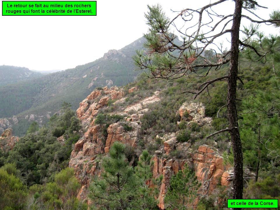 Le retour se fait au milieu des rochers rouges qui font la célébrité de l'Esterel,