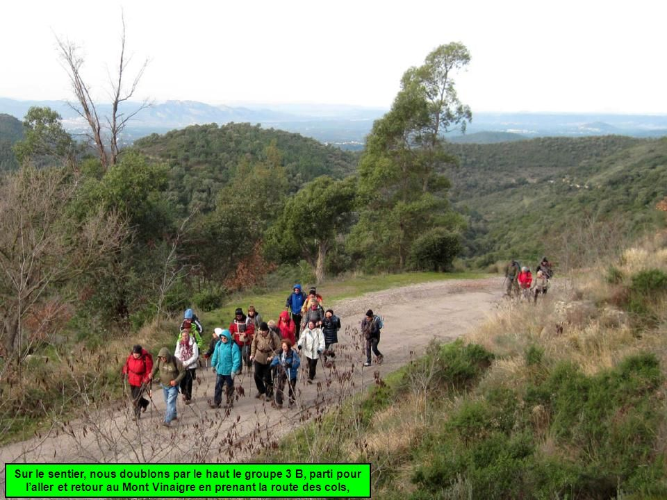Sur le sentier, nous doublons par le haut le groupe 3 B, parti pour l'aller et retour au Mont Vinaigre en prenant la route des cols,