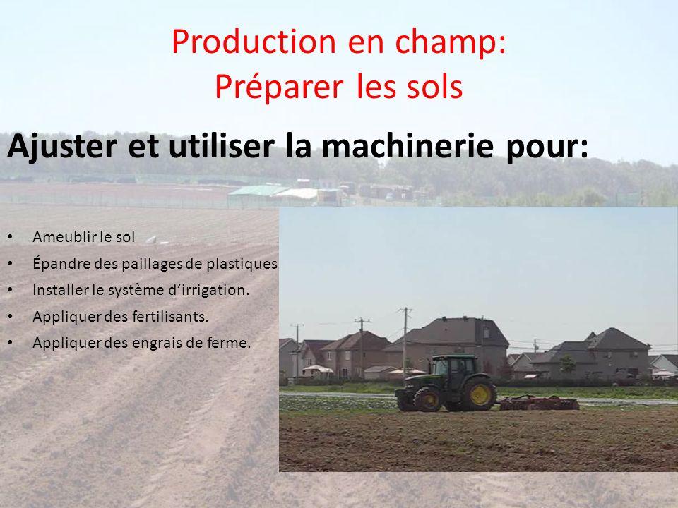 Production en champ: Préparer les sols