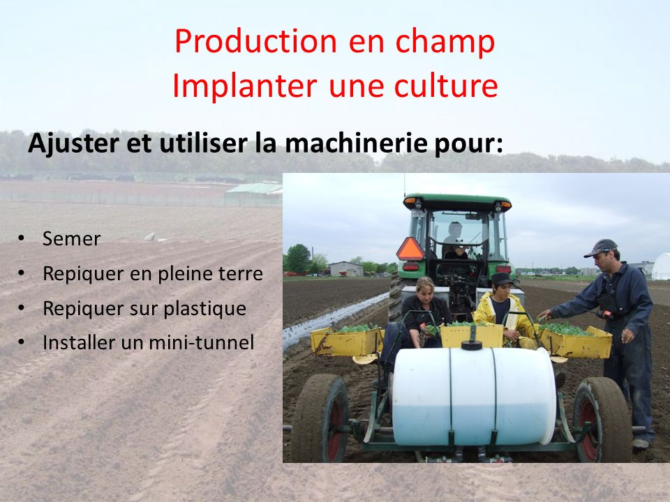 Production en champ Implanter une culture