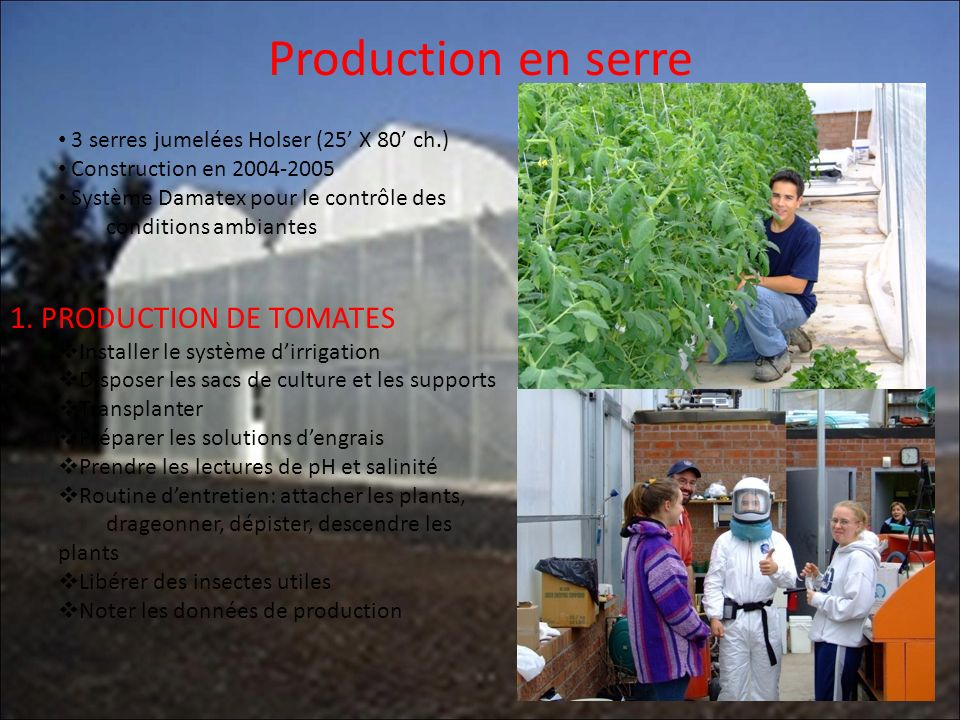 Production en serre 1. PRODUCTION DE TOMATES