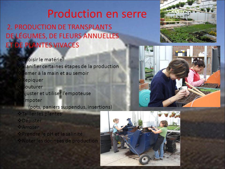 Production en serre 2. PRODUCTION DE TRANSPLANTS DE LÉGUMES, DE FLEURS ANNUELLES ET DE PLANTES VIVACES.
