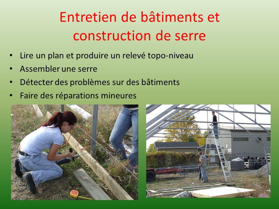 Entretien de bâtiments et construction de serre