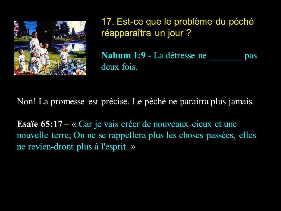 17. Est-ce que le problème du péché réapparaîtra un jour