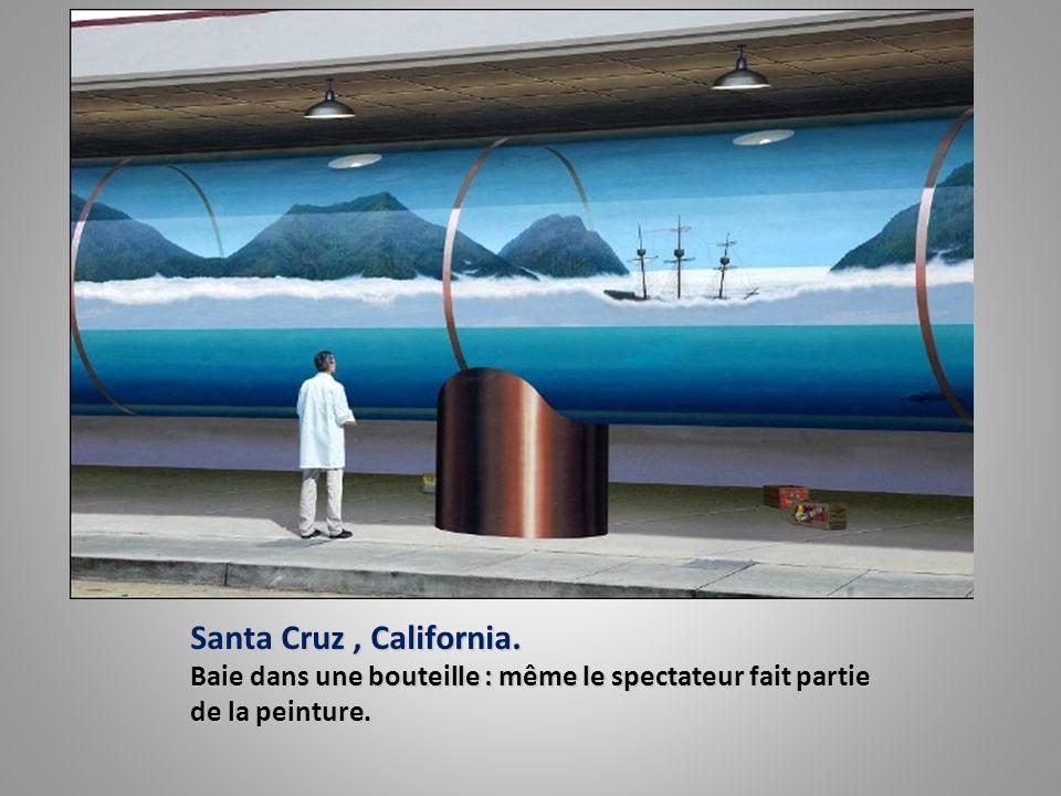 Santa Cruz , California. Baie dans une bouteille : même le spectateur fait partie de la peinture.