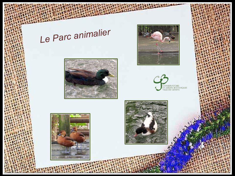 Le Parc animalier