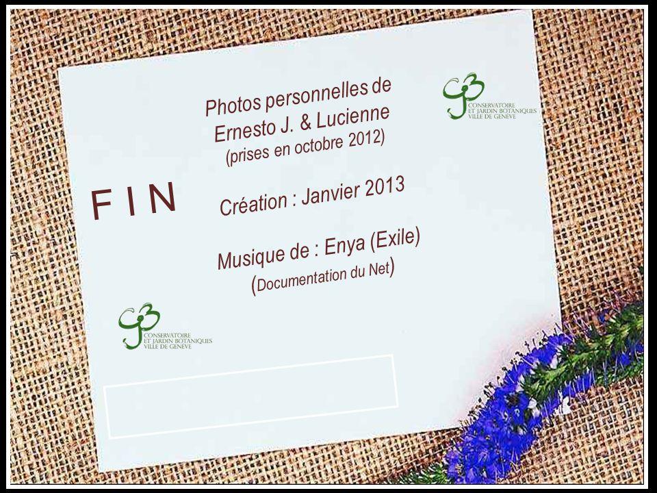 F I N Photos personnelles de Ernesto J. & Lucienne