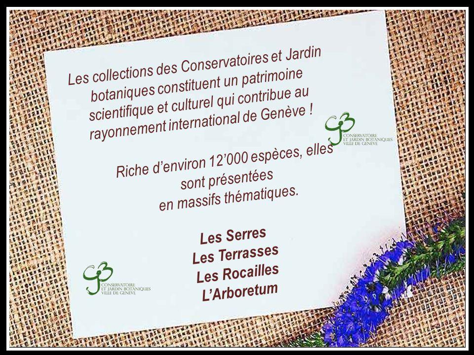 Les Serres Les Terrasses Les Rocailles L'Arboretum