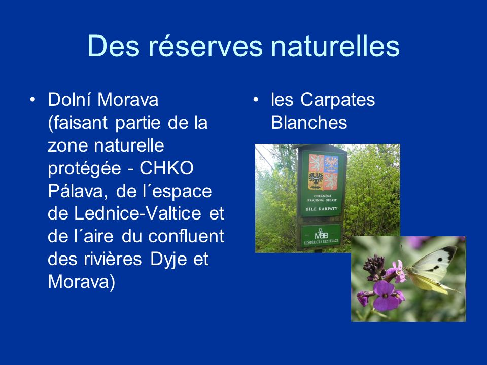Des réserves naturelles