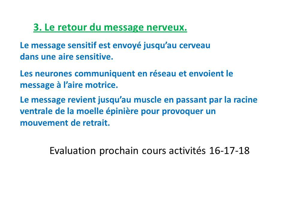 3. Le retour du message nerveux.
