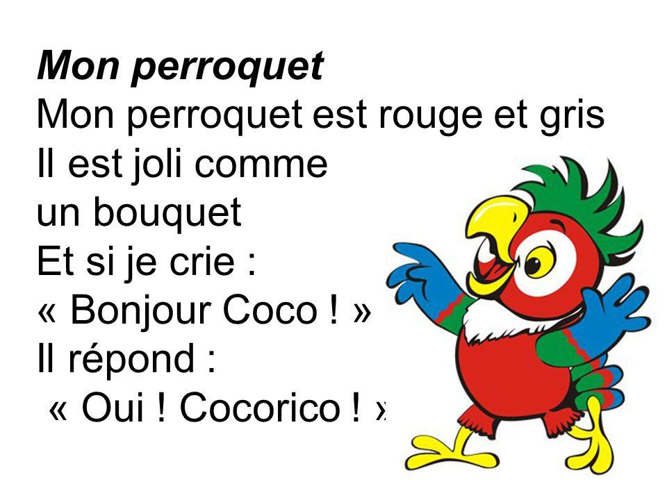 Mon perroquet Mon perroquet est rouge et gris Il est joli comme un bouquet Et si je crie : « Bonjour Coco .