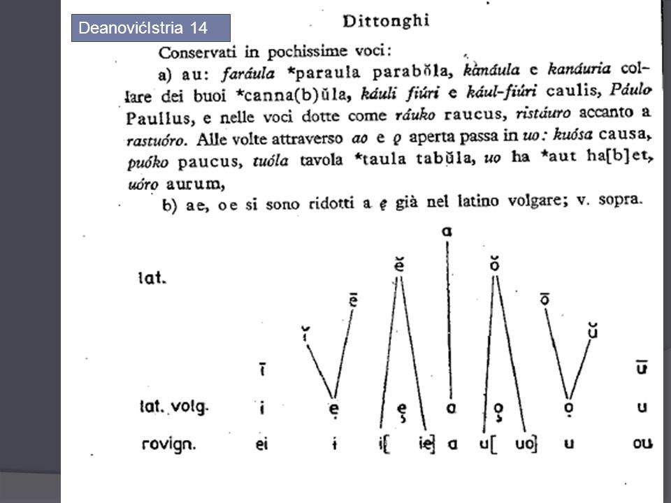 DeanovićIstria 14