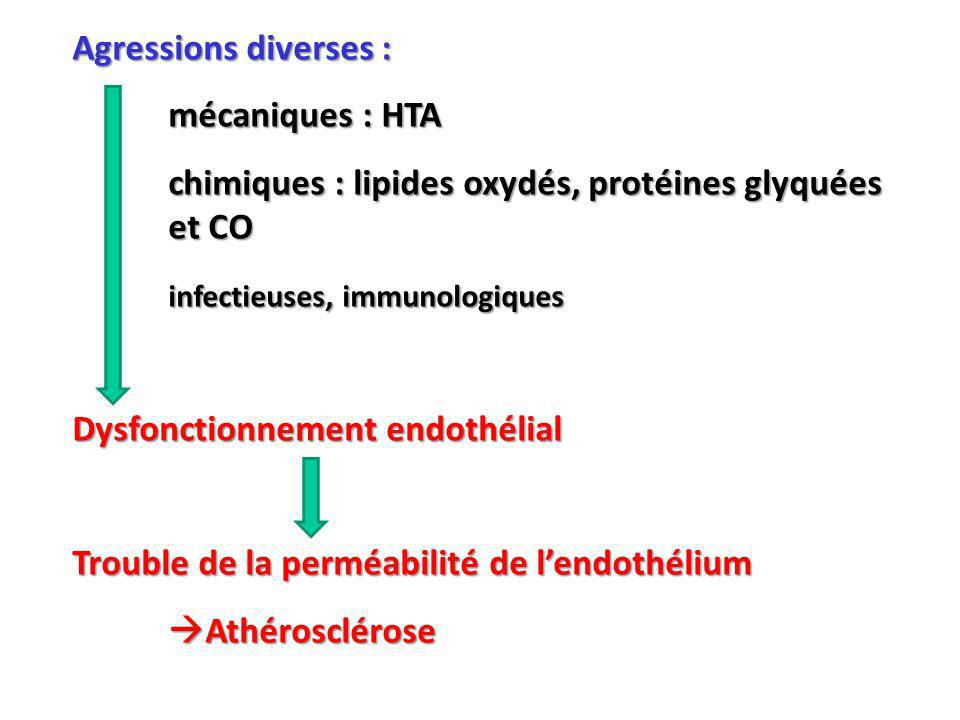 Agressions diverses : mécaniques : HTA. chimiques : lipides oxydés, protéines glyquées et CO. infectieuses, immunologiques.