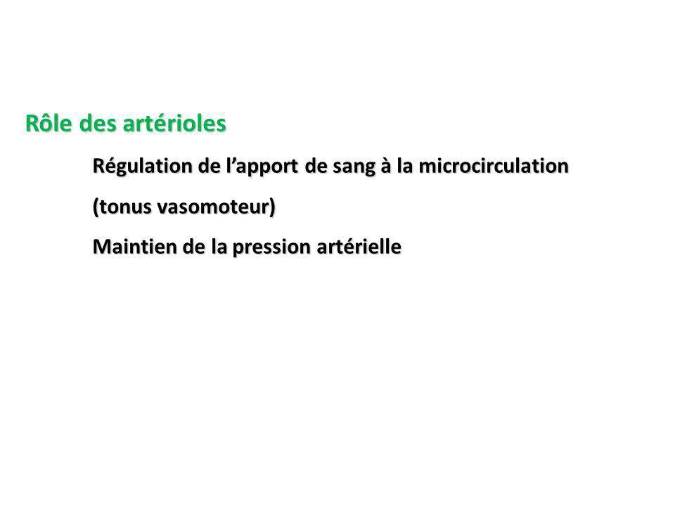 Rôle des artérioles Régulation de l'apport de sang à la microcirculation.