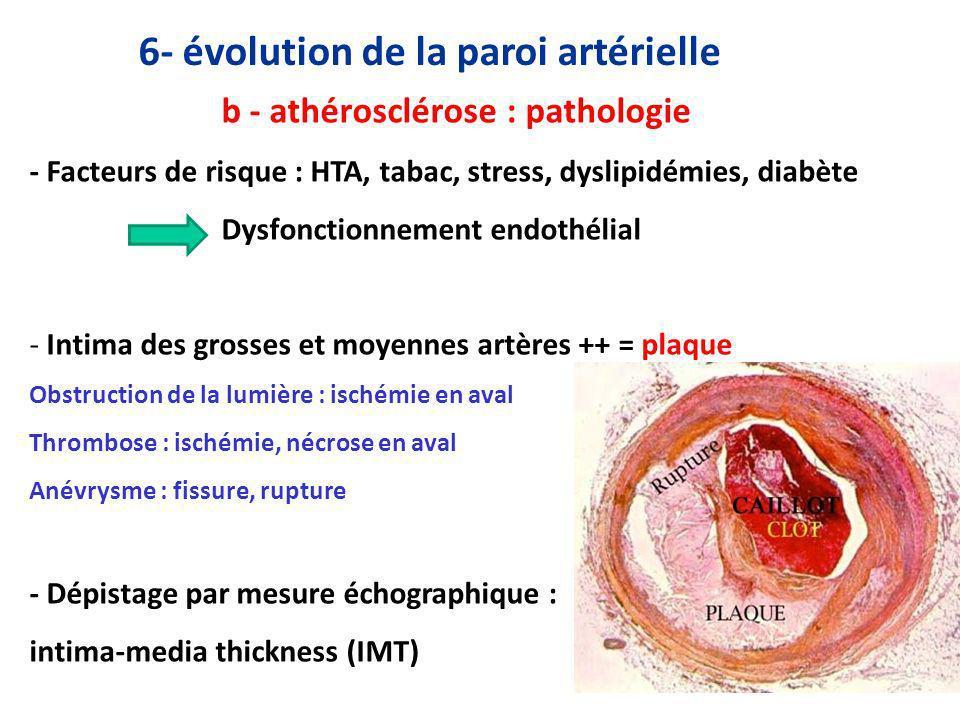 6- évolution de la paroi artérielle
