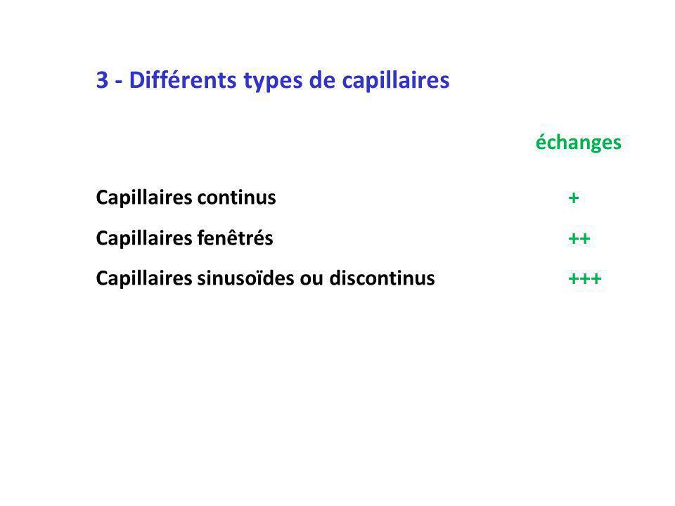 3 - Différents types de capillaires