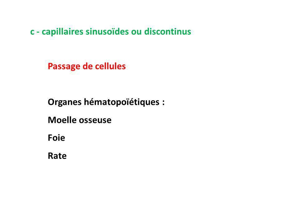 c - capillaires sinusoïdes ou discontinus