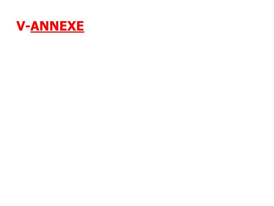 V-ANNEXE