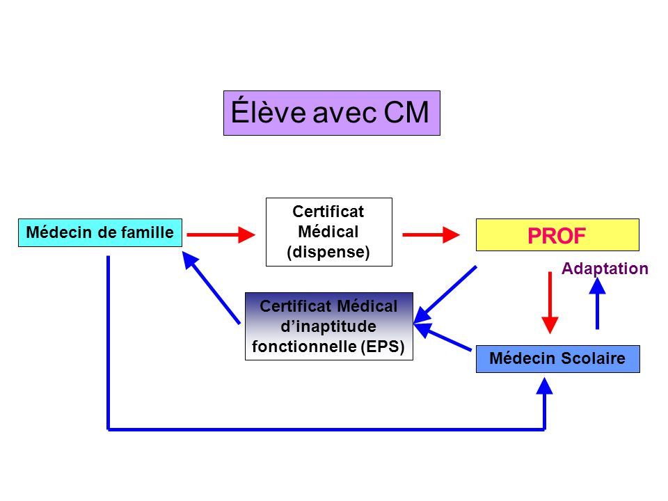 Élève avec CM PROF Certificat Médical (dispense) Médecin de famille