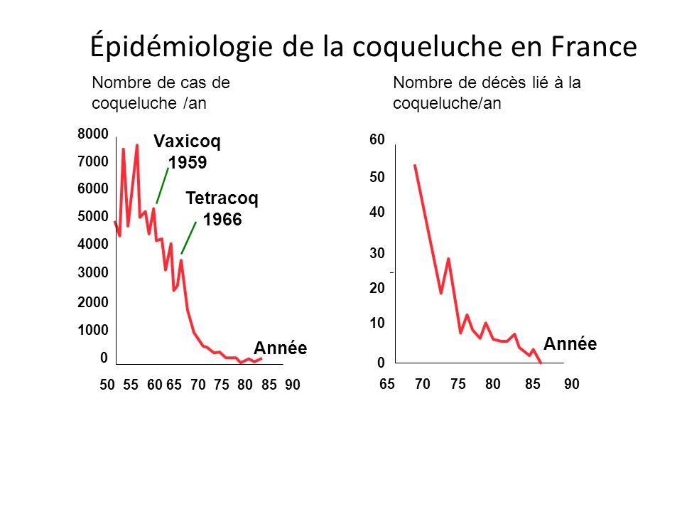 Épidémiologie de la coqueluche en France