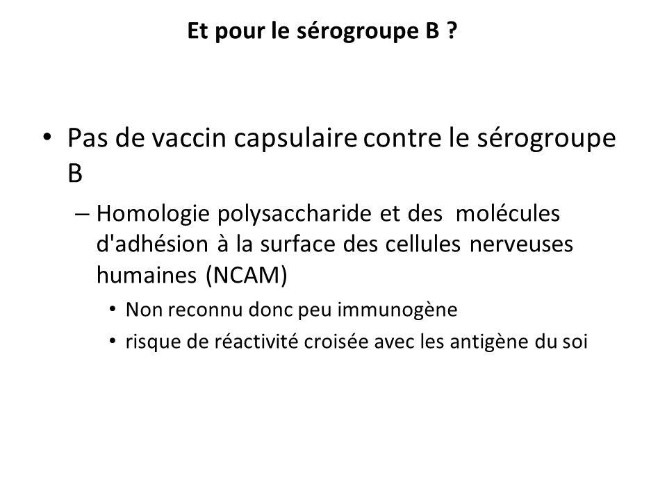 Pas de vaccin capsulaire contre le sérogroupe B