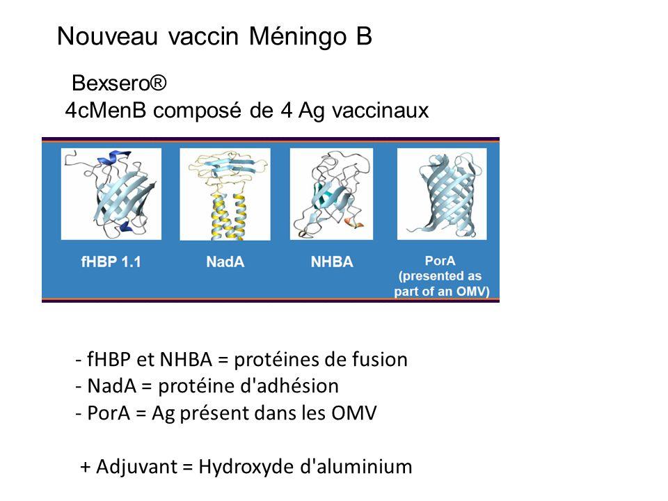 Nouveau vaccin Méningo B