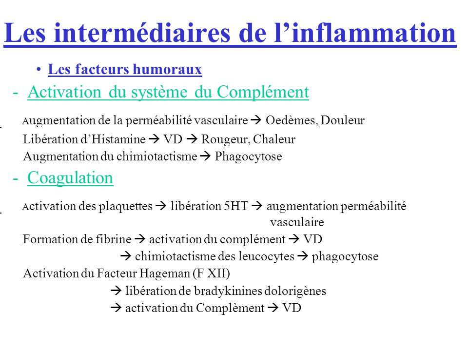 Les intermédiaires de l'inflammation