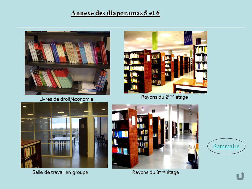 Annexe des diaporamas 5 et 6