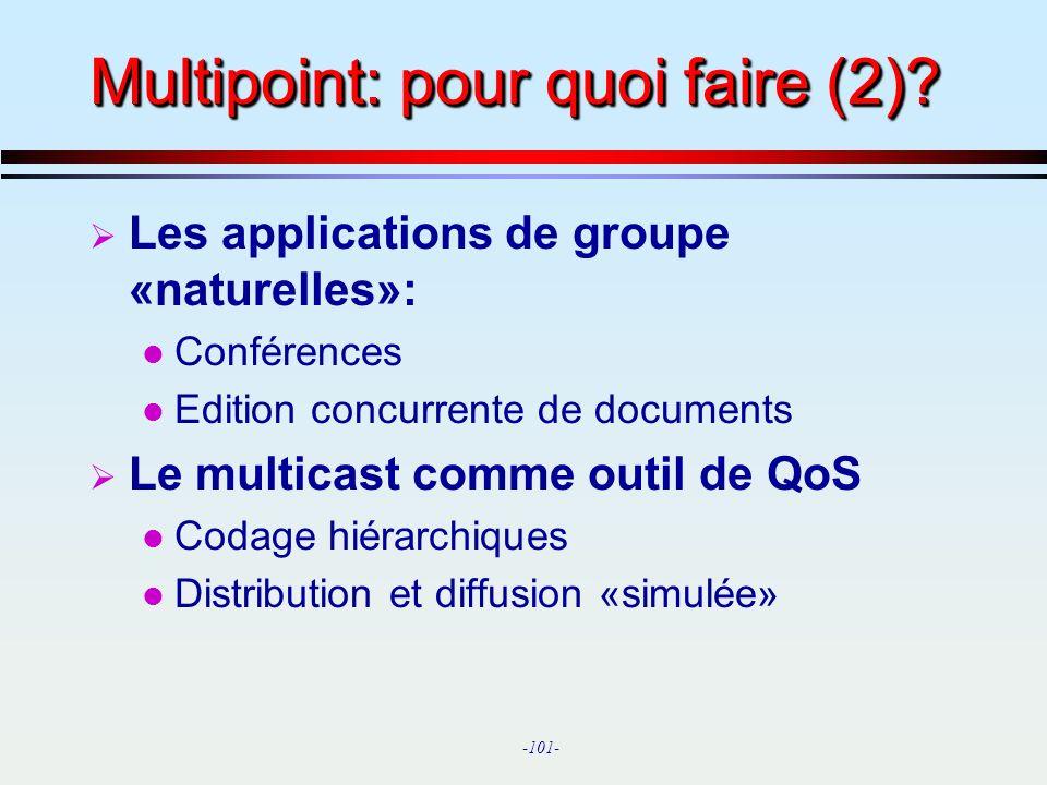 Multipoint: pour quoi faire (2)