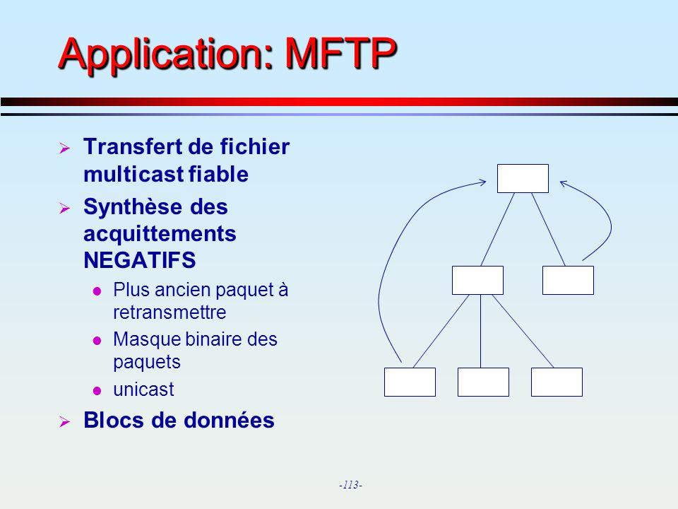 Application: MFTP Transfert de fichier multicast fiable