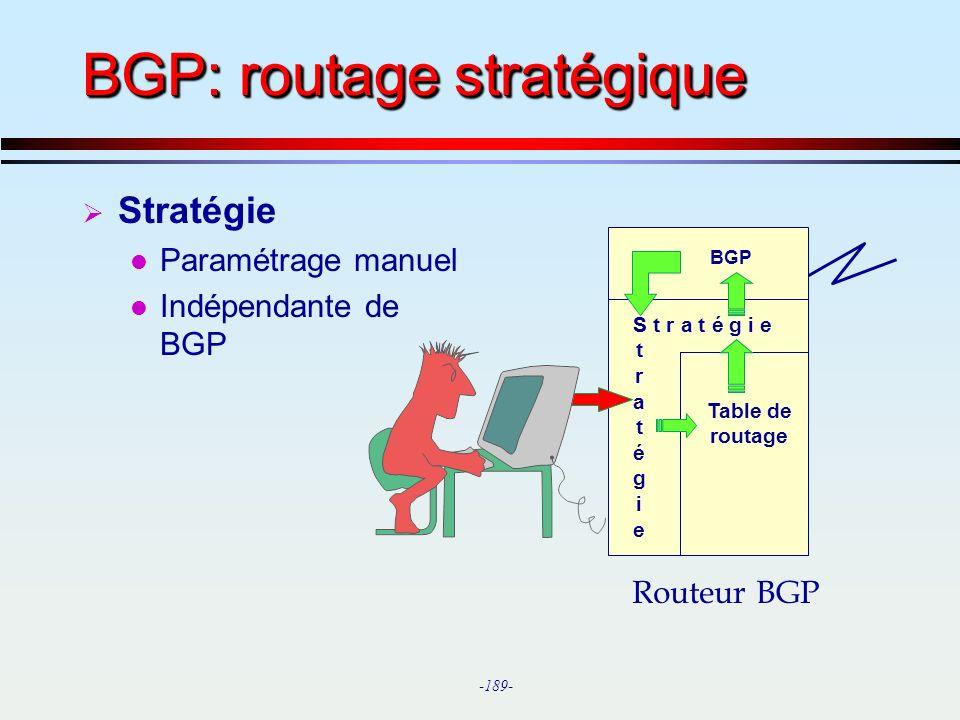 BGP: routage stratégique