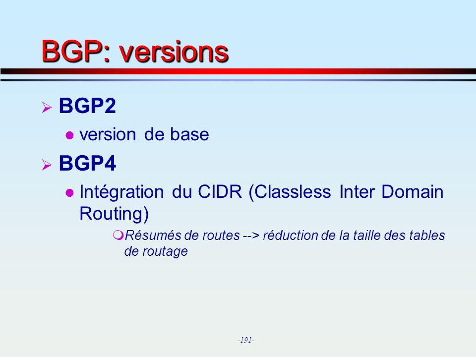 BGP: versions BGP2 BGP4 version de base