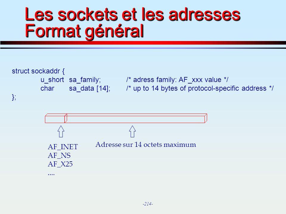 Les sockets et les adresses Format général