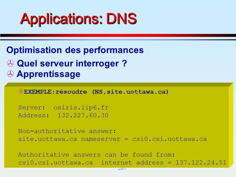 Applications: DNS Optimisation des performances