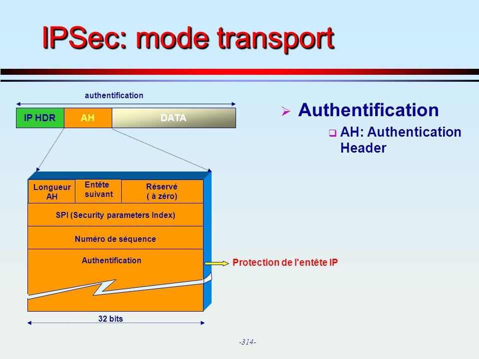 SPI (Security parameters Index)