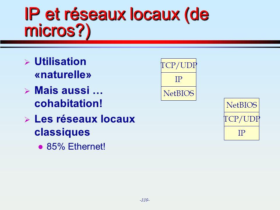 IP et réseaux locaux (de micros )